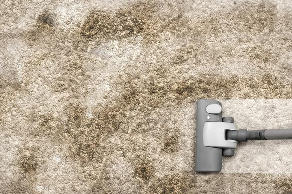 idaho falls commercial carpet cleaning